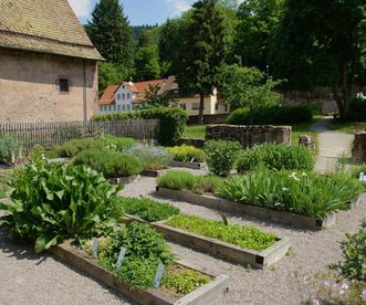 Monastery garden at Hirsau Monastery. Image: Calw Tourist Information